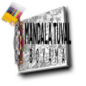 Karışık Mandala Tuval