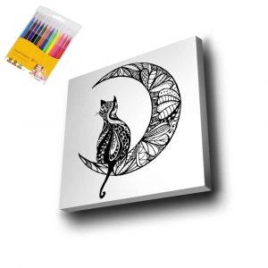Ay ve Kedi Mandala Tuval